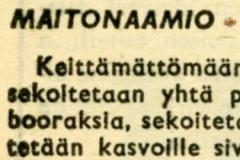 Maitonaamio