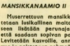 Mansikkanaamio II