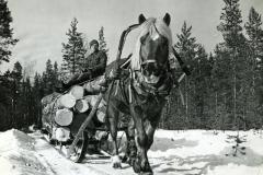Enso-Gutzeitin henkilökunnan lehti 1/1952