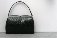 Käsilaukku ja alligaattori