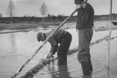 Uittajat työssään, v. 1938, Nokia Oy, puunjalostusteollisuus